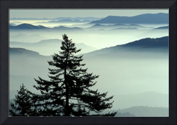 Smoky Mountains - Sunrise from Clingmans Dome, Gre
