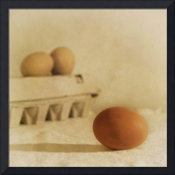 three eggs and a egg box