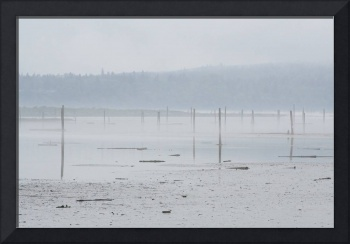 misty port gardener mud flats