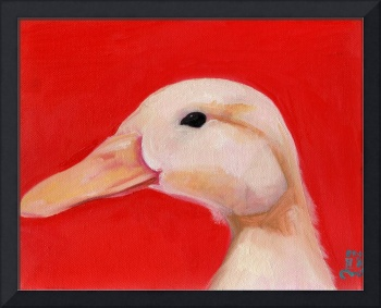 Portrait of Chester - White Duck