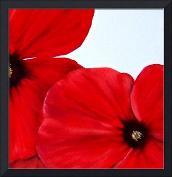 Abstract Poppies 2