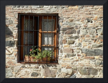 Colonial house's window