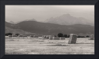 Colorado Farming Panorama View in BW Pt 1