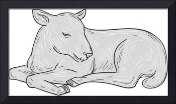 Lamb Sleeping Drawing