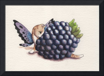 Blackberry Fairy Cat