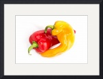Two Peppers Intertwined by D. Brent Walton
