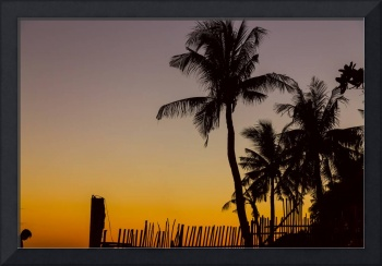 Colorful Tropical Paradise Sunset Silhouettes