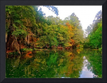 Louisiana Bayou in Autumn 2