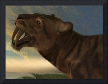 The Saber-Tooth Cat with dagger like front canine