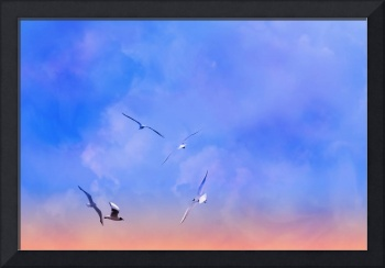 Birds in the sky 3