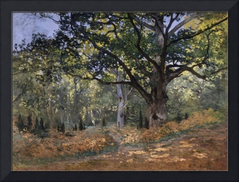 The Bodmer Oak, Fontainebleau Forest , Claude Mone