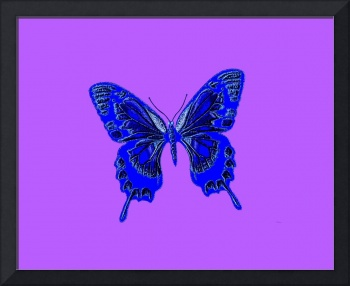 Blue Butterfly Lavender Background