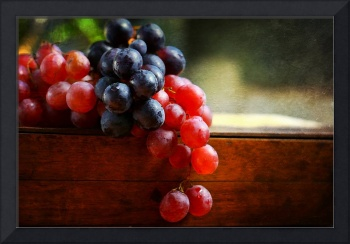 Grapes & Paint