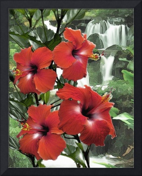 Hibiscus Waterfall