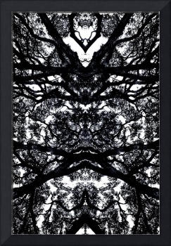 ABSTRACT ANSON ROAD TREE #100, EDIT C