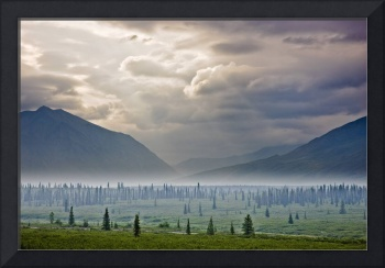 Atmospheric scenic of Broad Pass and boreal forest