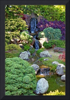 SF Japanese Tea Garden Study 26