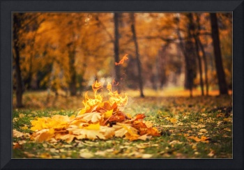 leaves burning