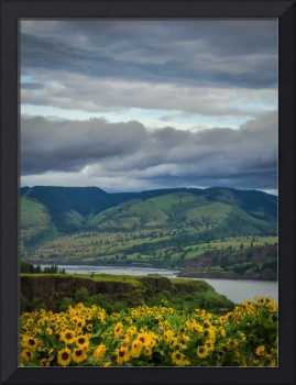 Morning at Rowena Crest