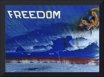 Frozen Freedom by Bill McAllen