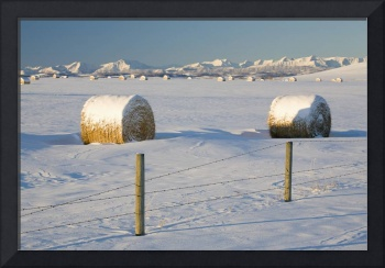 Snow Covered Hay Bales With Mountains In The Backg