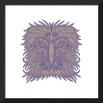 Great Philippine Eagle Head Mono Line