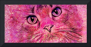 Pink Pussy Cat