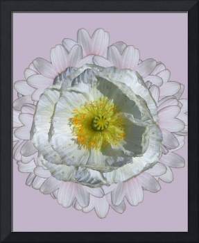flower mandala: white
