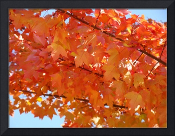 GOLDEN LEAVES Yellow Orange Autumn Leaves Art