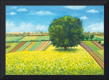 Meadow landscape with yellow flowers