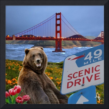 Scenic Drive in San Francisco
