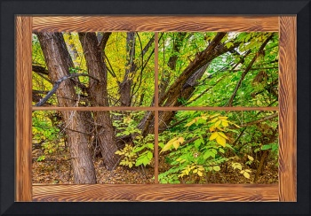 Forest_Barn_Wood_Picture_Window_Frame_View