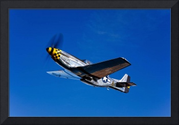 A P 51D Mustang Kimberly Kaye in flight