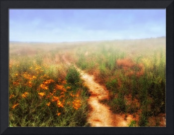 Steppe and flowers.
