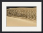 Dune Wave by Marylynne Diggs