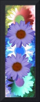 Vertical Daisy Collage