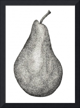 Stippled Pear
