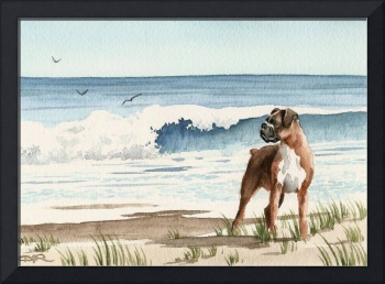 Boxer at the Beach