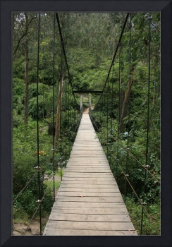 Path Over the Swinging Bridge