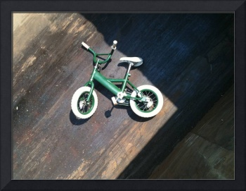 Bicycle in the dumpster