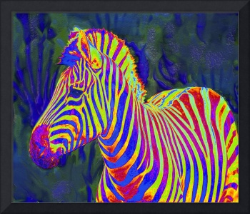 one more pyschedelic zebra