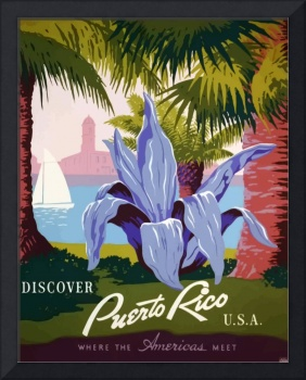 Vintage Puerto Rico Flower Travel