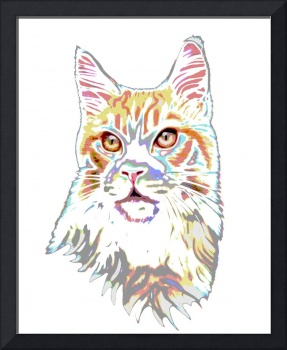 Psychedelic Maine Coon
