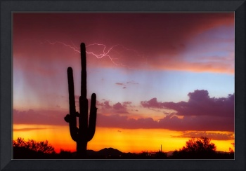 Lightning  Saguaro Sunset