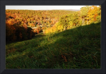 Ski Slope in Fall