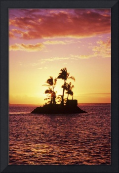 Palm Trees On Small Island Silhouetted Against Tro