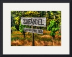 Zinfandel by David Smith