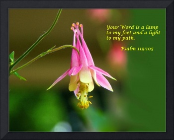 Your Word A Light Unto My Path