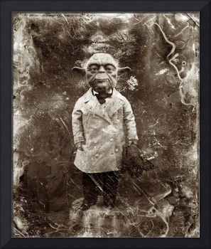 Yoda Star Wars Antique Photo