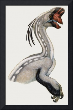 Oviraptor, a small dinosaur that lived during the